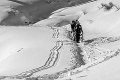 Track (Guido Colombini) Tags: pontedilegno tonale bw valcamonica inverno bianconero snow