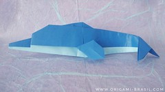 11/365 Dolphin by Hsi-Min Tai (origami_artist_diego) Tags: origami origamichallenge 365days 365origamichallenge dolphin
