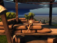 Into The Wild (Flawless Developments) Tags: maitreya krescendo tspot d2t sintiklia laq aco rackposes flawless rack poses developments second life video game virtual reality blog blogger photo photographer quiggles easterwood