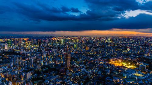 Tokyo Night View / 東京夜色