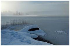 Morning Fog (Krogen) Tags: norge norway norwegen akershus romerike ullensaker nordbytjernet winter vinter krogen motorolag5plus smartphone