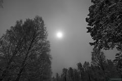 Night Sky Klenshyttan (kentkirjonen) Tags: window fönster abandoned övergivet övergiven canon 80d unorganized oorganiserad rust rost old gammal sweden sverige dalarna ue decay förfall tegelsten tegelstenar brick bricks wood trä klenshyttan blast furnace iron ironworks järn hytta masugn night natt snow snö