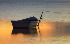 Mar en calma, reflexes daurats, _DSC3741 (Francesc //*//) Tags: dorat dorado mar calma barca sea calm deltadelebre deltadelebro golden doré batreau boat reflex reflejo reflejos reflexes reflections