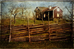 Roundpole fence (BirgittaSjostedt- away for a while.) Tags: fence rural house traditional outdoor spring tree garden scene sweden fencefriday roundpole roundpolefence birgittasjostedt