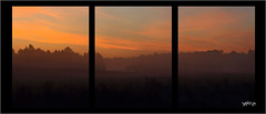 Sunrise Mist. (Picture post.) Tags: landscape nature green mist triptych sunrise clouds trees fields paysage arbre brume triple three thirds equal