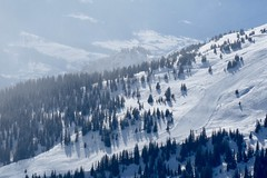 Slope (fxdx) Tags: slope skiing mountains trees sky clouds lf1