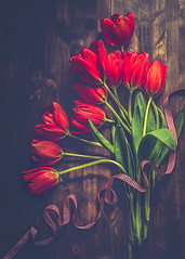 Red tulips (RoCafe Off for a while) Tags: red rojo stilllife tulips bodegón flores flowers tulipanes tabletop wood nikkor2470f28 nikond600 magicunicornverybest