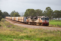 In to the Loop (PJ Reading) Tags: train rail railway transport transportation travel australia nsw newsouthwales country tracks huntervalley hunter valley sct cargo freight goods intermodal containers pallets efficient diesel locomotive wallarobba melbourne brisbane bm9