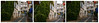 Third Time Lucky. Triptych. (Picture post.) Tags: road pub cafe girl dog car chairs tables buildings ivy triptych