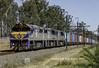 VL's on the Kelso (Rob 1976) Tags: sydney nsw australia australianrailways trains diesels containertrain cfcla ssr 8146 vlclass vls vl354 vl357 vl355 werrington ssrcontainertrain