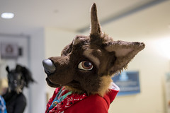 DSC01607 (Kory / Leo Nardo) Tags: furry fursuit suiting dance party dj con convention further confusion fc san jose marriott center 2018 fc2018 pupleo leo kory fur costume costuming cosplay animals