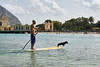Surfing dog in Mondello (radkuch.13) Tags: dachshund sicily sea dog summer mondello surfing paddleboard italy