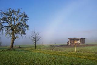 Arc de brouillard