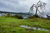 DSCF5922.jpg (RHMImages) Tags: xt2 16mm foresthillbridge landscape bridge fuji fog auburn fujifilm