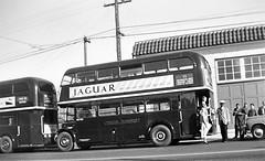 London transport RT2776 behind RTL1307 USA 1952. (Ledlon89) Tags: rt rtbu aecregent parkroyal lt lte londontransport bus buses londonbus londonbuses 1950s usa canada 1952 tour london