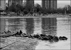 Writing at the Water's Edge (HereInVancouver) Tags: candid woman writing water ocean pacific buildings urban beach city rocks bw englishbay streetphotography vancouverswestend vancouver blackandwhite bc canada canong3x thingstodobythewater