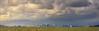 Rain over the City - The San Francisco Bay (luqmac) Tags: alamedaca alamedashoreline california cameras nikond610 sanfranciscobay sanfranciscoskyline usa westcoast what where