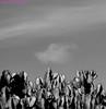 Orden aleatorio. Costa Teguise, Lanzarote, noviembre 2010. (Jazz Sandoval) Tags: 2010 elfumador españa exterior enlacalle blancoynegro blanco bn bw beautiful blackandwhite contraste canarias curiosidad curiosity calle cienciasnaturales cielo digital day dìa fotografíadecalle fotodecalle fotografíacallejera fotosdecalle costateguise white islascanarias ilustración jazzsandoval jardín sky luz lanzarote light monocromática monócromo negro nero naturaleza paisaje cactus quieto streetphotography streetphoto sombras vegetal vegetable nubes nube noiretblanc