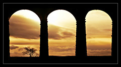 Underneath the arches (david.hayes77) Tags: yorkshiredales ribblehead yorkshire silhouette battymossviaduct 2018 contrejour arches tree settleandcarlisle sc thethreepeaks railway bridge infrastructure underneaththearches sundown