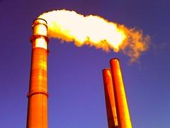 (brotherM) Tags: stacks smoke steam smokestacks powerplant florida apollobeach lores digitalharinezumi manateeviewingcenter teco tampaelectric bigbendpowerstation