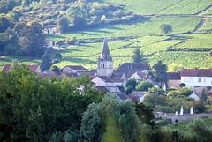Saint-Martin-sous-Montaigu (71) (odile.cognard.guinot) Tags: bourgogne saôneetloire bourgognefranchecomté 71 saintmartinsousmontaigu valléedesvaux