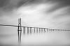 Vasco da Gama profilic mono (frank_w_aus_l) Tags: bridge architecture portugal lisbon lissabon vascodagama fineart nikon d800 sky reflection concrete morning morgenlicht rain monochrome sw bw netb