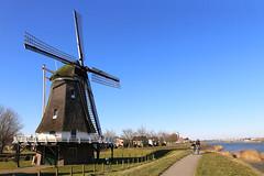d'Olde Zwarver (HansHolt) Tags: mill molen doldezwarver dike dyke dijk path pad fence hek landscape ijssel river rivier kampen overijssel netherlands canon 6d canoneos6d canonef24105mmf4lisusm