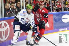 DEL2018-61.jpg (sushysan.de) Tags: bundesliga del deutscheeishockeyliga eishockey iserlohn iserlohnroosters kec köln kölnerhaie lanxessarena pix pixsportfotos roosters saison20172018 pixsportfotosde sushysan sushysande