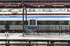 At the station (A blond-Tess) Tags: 365days 365photochallenge dailychallenge dailyphotochallenge 365challenge streetphotography canonphotography candid station snowy snow snowfall snö waitingatthestation waiting 50mm train trainstation winter