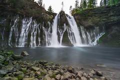 McArthur–Burney Falls (AkDExplorer) Tags: burney california shasta nikon d850 laowa 15mm wideangle nature waterscape slowshutter breakthroughfilter gnd benro acratech