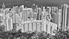 Hong Kong from Lugard Road (57Andrew) Tags: lnyday hongkong bw lugardroad thepeak landscape monochrome
