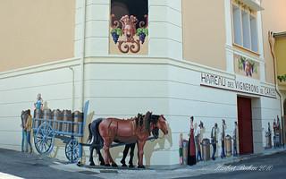 DSC05060 - CARCES, Provence