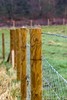 Droplets and Posts (Photo_stream_this) Tags: clumber park nottinghamshire rain droplets posts