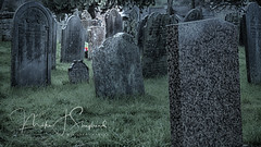 Ascension (mik-shep) Tags: andfinally 118picturesin2018 118 stones stone grave graveyard churchyard ascension flower red light green xt10 fujifilm fuji plympton plymouth granite life death
