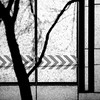 ( Between form and function ) (Wandering Dom) Tags: design form function wall shadows sunlight urban building architecture geometry humans nature existence time life reality dreams earth multiverse roam wandering