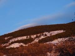 Paysage (chris photo66) Tags: neige