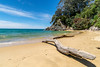 Abel Tasman NP - New Zealand (arnaud.badiane) Tags: beach abel tasman national park new zealand south island sun sand water sea nature travel landscape