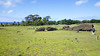 20171206_114006 (taver) Tags: chile rapanui easterisland isladepasqua summer samsunggalaxys6 dec2017 06122017 ranoraraku quary