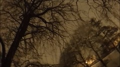 ️eXploration 17 🌟Lake {Berchères} [Snow] (Pontault Combault) 🌌Nature (eXploration Etoile) Tags: etoile exploration explorations etoiles etl e emagination emotions emotion europe emagine espana explore explores emaginationemotion eoiles pontault combault travelling travel traveller travellers travels travelled travellings tree travelpics travelpicture travellingpicture travelpictures traveling tourism traveltv toiles travellingunitedstatesofamerica travelusa tt t time stars star style