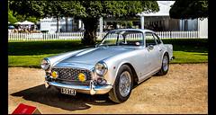 Triumph Italia 2000 Coupé (1959) (Laurent DUCHENE) Tags: concoursofelegance hamptoncourtpalace car automobile automobiles 2017 triumph italia 2000 coupé