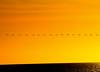 camber (grahamfellows58) Tags: cormorants camber eastsussex nikon yellow orange sea seaside ocean bay birds evening light ryebay art sundown