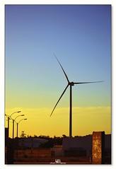 El grandote del pueblo (_Joaquin_) Tags: joaquinlapizaga joalc joafotografia nikond3200 nikkor55300mm uruguay canelones laspiedras flickr sol molino viento energia acontraluz ciudad horadorada