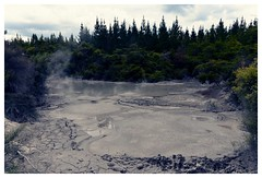 Rotorua (AdrienMD) Tags: rotorua national park sulfur source new zealand smokes nouvelle zélande northern north island