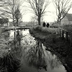 Pond (Bernhardt Franz) Tags: pond weiher teich wasser weed trees couple mühlenhof münster bw blackandwhite reflection buildings architecture