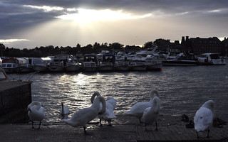 August evening, Oulton Broad