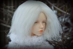 (OxygenB) Tags: iplehouse bianca boy dollchateau albino