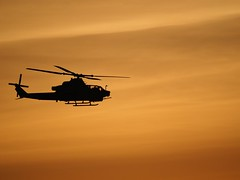 Bird in flight. (isaacullah) Tags: silhouette silhouhette helicopter sunset sky shadow flight flying