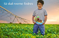 (kfjordt) Tags: adm agriculture crop family farm farmer field gooding idaho larrygillette people soybeans work migmig