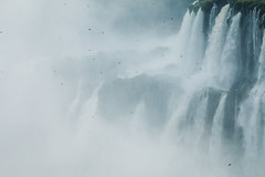 Cataratas de Iguazú (julien.ginefri) Tags: argentina argentine america latinamerica southamerica cataratas brazil brasil iguaçu iguazu waterfall