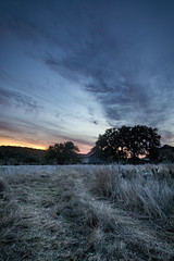 sunset dream barn (KClarkPhotography) Tags: hill country state natural area texas sunset dramatic sky old barn live oak